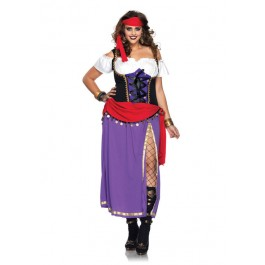 Plus Size Traveling Gypsy Costume