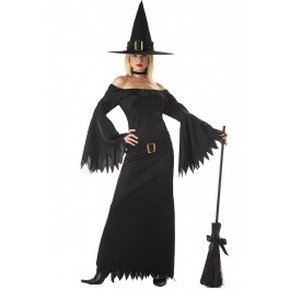 Elegant Witch Plus Size Costume