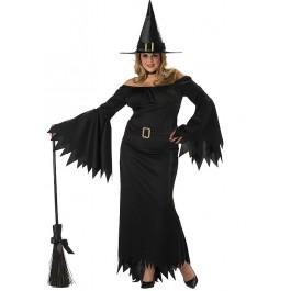 Elegant Witch Plus Size Costume