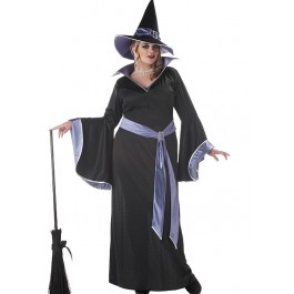 Incantasia Glamour Witch Plus Size Costume