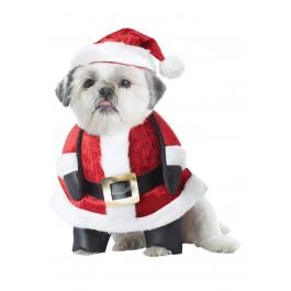 Santa Pup