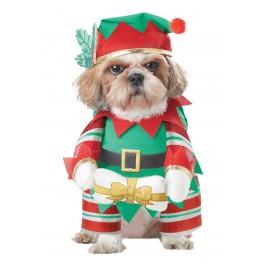 Elf Pup
