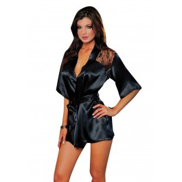 Lace Intrigue Charmeuse Robe