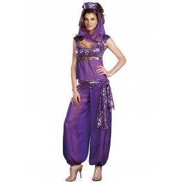 Dreamgirl 7572 Ally Kazam Sexy Genie Costume