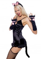 Pretty Kitty Accessory Kit Costume