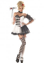 Le Belle Harlequin Dress Costume