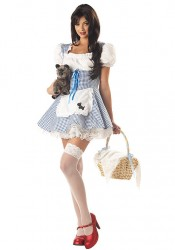Sweetheart Dorothy Costume
