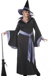 Incantasia Glamour Witch Plus Size Costume