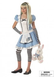 Alice Fairytale Junior Teen Holiday Party Costume
