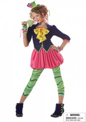The Mad Hatter Fairytale Junior Teen Party Costume