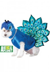 Animal Planet Peacock Pet