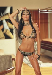 Dreamgirl 5012 Gypsy Dancer Sexy Roleplay Lingerie