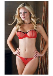 Sheer Mesh Underwire Plus Size Bra And G-String