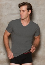 Men's Modal V-Neck T-Shirt.